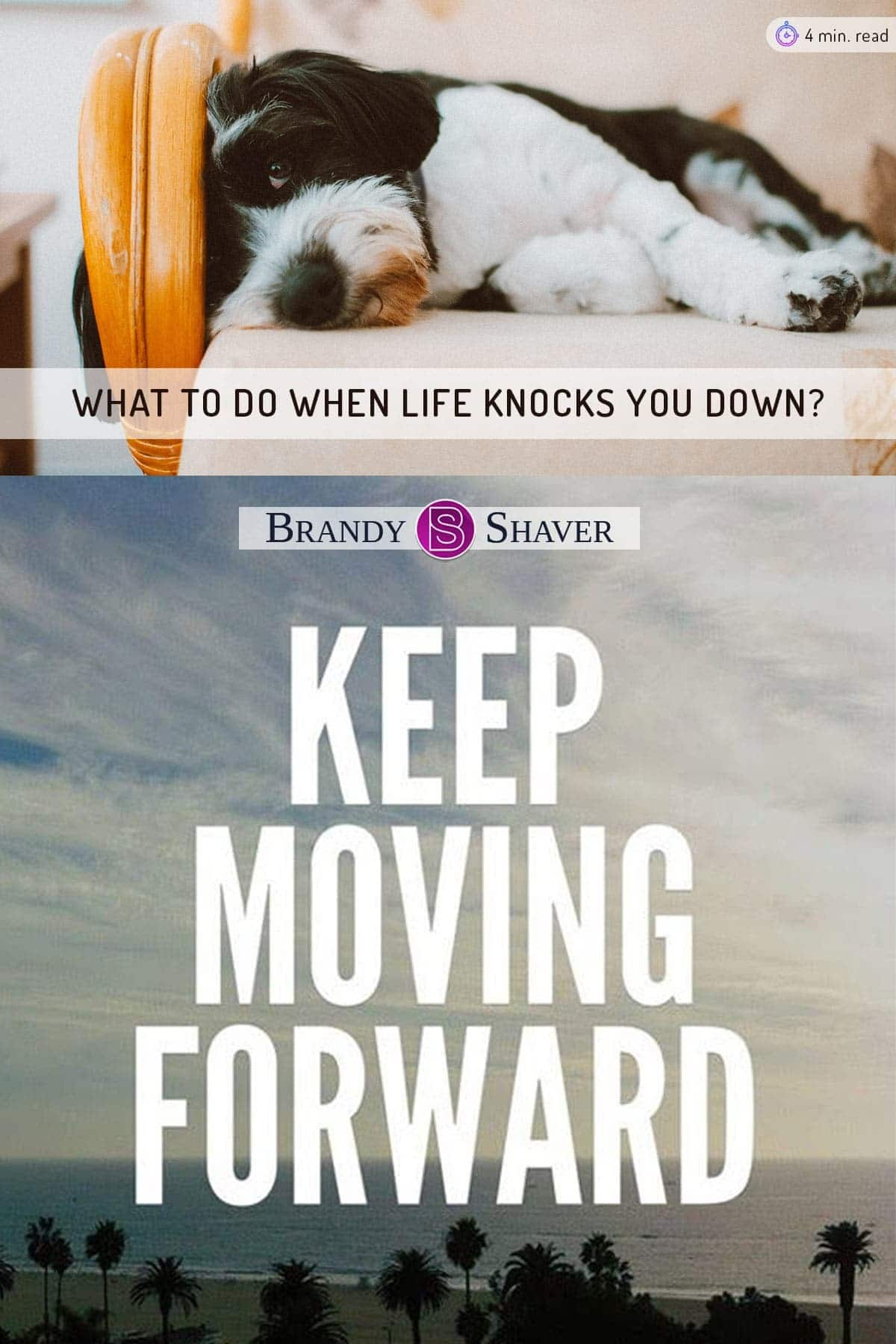 What to do when life knocks you down...keeping moving forward!